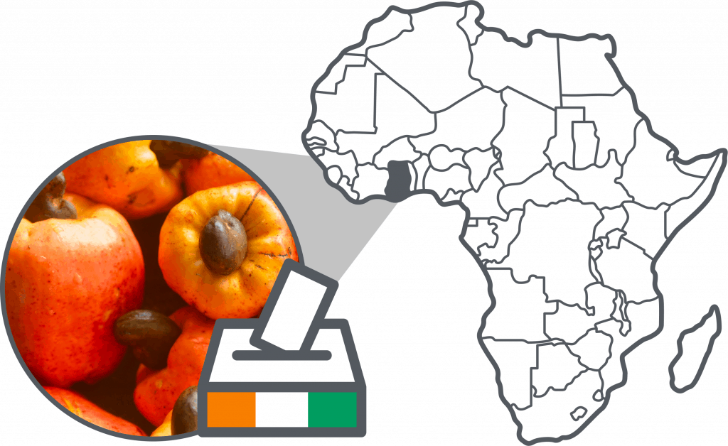Cover picture post elections Ivory Coast
