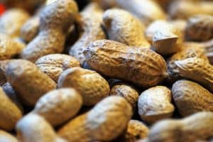 Inshell Peanuts, market report September 2020