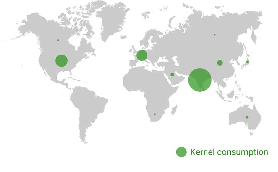 Kernel exports & consumption