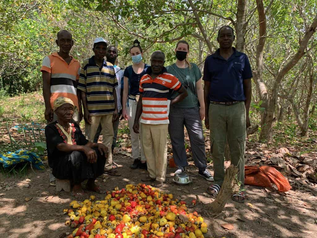 isit to IVC cashew farmers