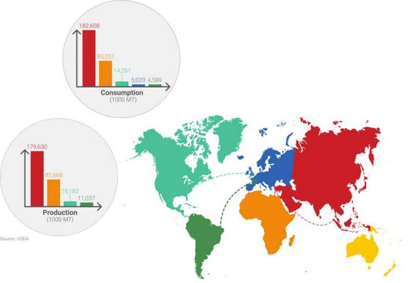 Map world peanut Consumption / production